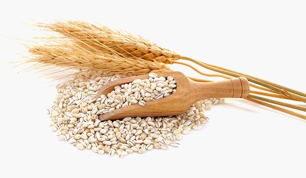 Preveneo - Alergie i nietolerancje pokarmowe